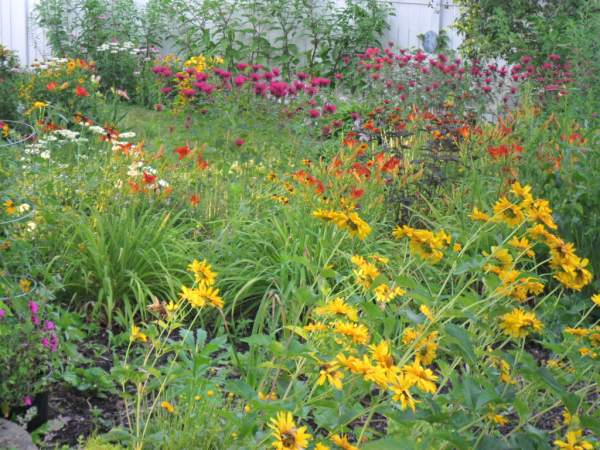 july garden82