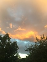 My photo doesn't do the Canberra sunsets justice