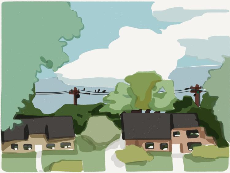 birds resting between two houses
