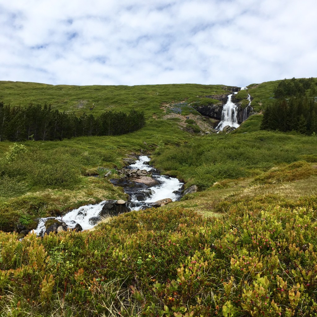 a waterfall near Isafjordur in Iceland