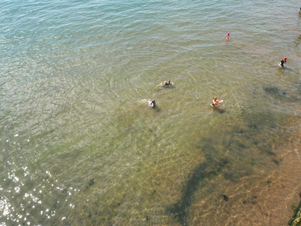 people swimming at Torquay- great place to visit in south east Devon
