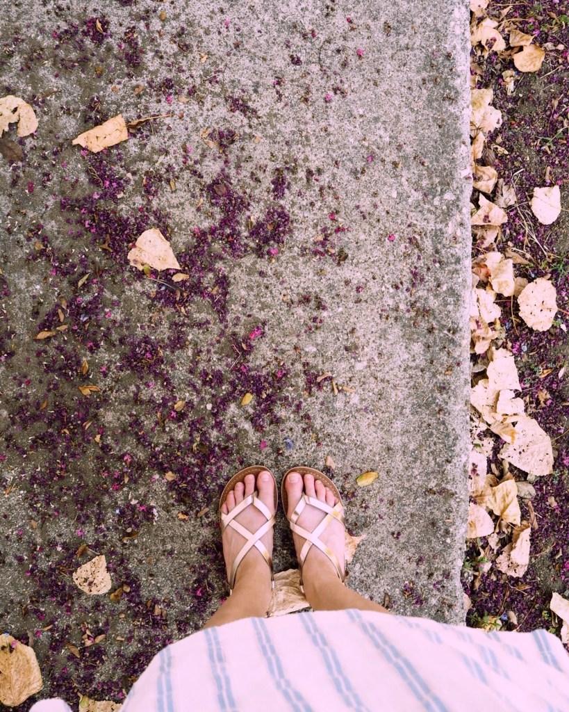 gold sandals and petals