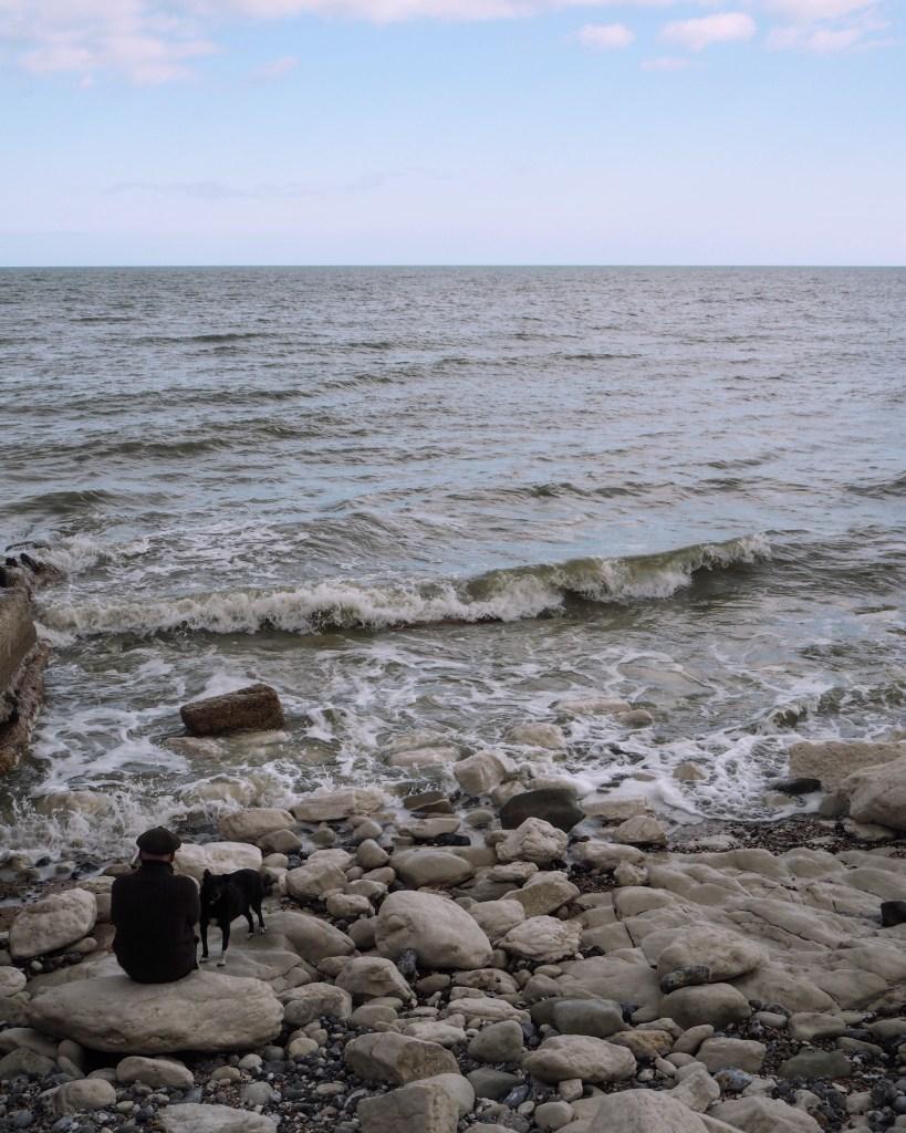 a man and a dog on the beach