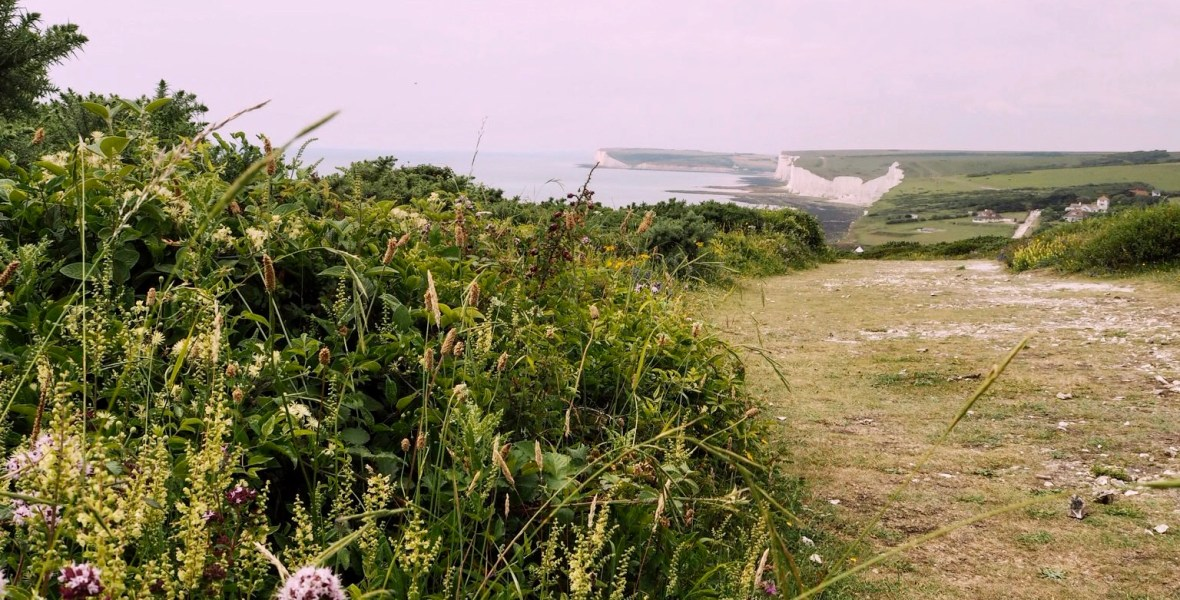 eastbourne walks