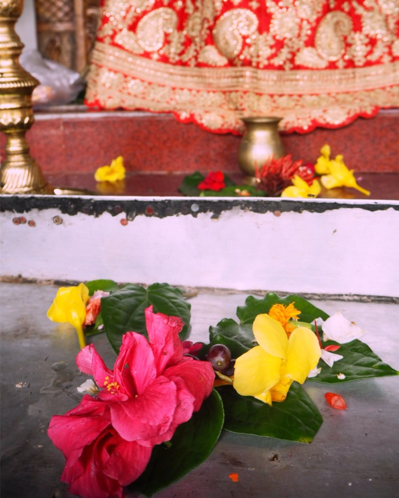 hibiscus flower offerings at a Hindu altar at Grand Bassin