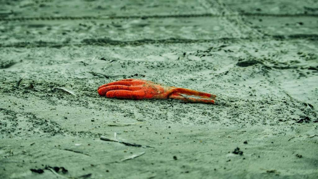 life's a beach alex hamstra