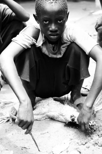 Baboucar kills a chicken