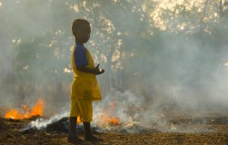 Seert surveys the yearly burning of fields in preparation for planting new crops.