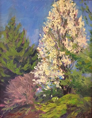 An oil painting of a blooming bradford pear tree