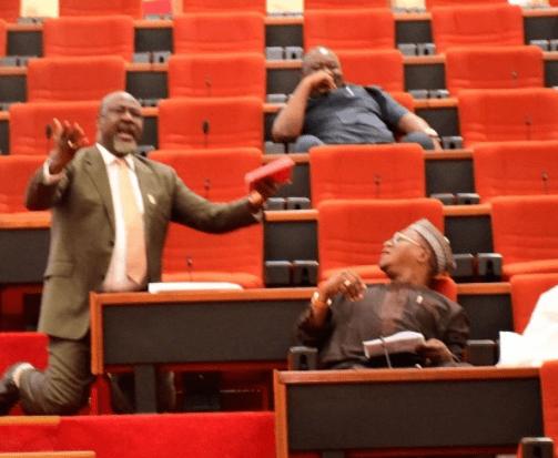 Senator Dino Melaye Kneels Down In The Senate, Begs To Save Kogi State ( Photos )