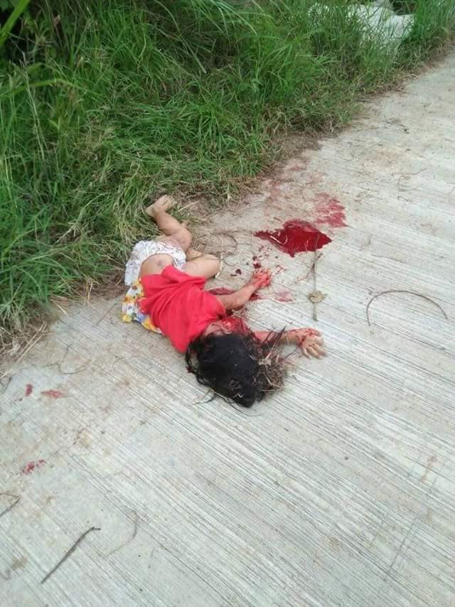 Graphic: 4-year-old girl savagely mauled to death by three dogs