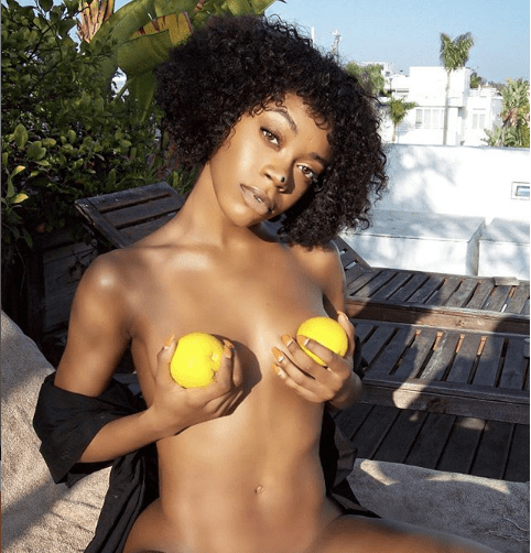 US-based Nigerian swimsuit model, Michelle Okoro goes naked in new photo with oranges placed strategically?18+