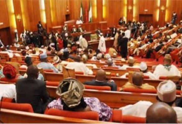 Breaking: Senate passes 2019 budget, jerks it up by N86 billion