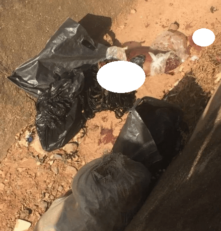 Severed head and body parts of a woman found dumped by the roadside in Abuja  (graphic photo)