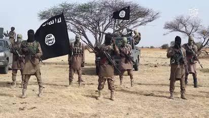 Boko Haram cuts off Maiduguri from national electricity grid, burns UN facility (photos)