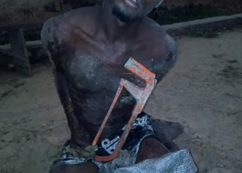 Notorious thief nabbed in Bayelsa