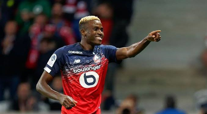 Lille football club of France place massive ?100m price tag on Victor Osimhen