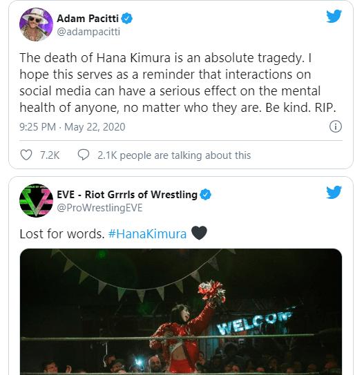 Netflix star and Japanese wrestler, Hana Kimura dies at 22