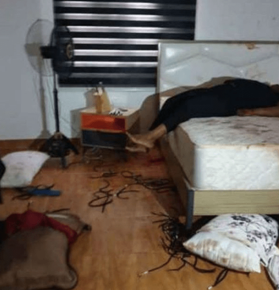 See photos of couple involved in murder/suicide incident in Lagos + graphic photos from the scene of the murder