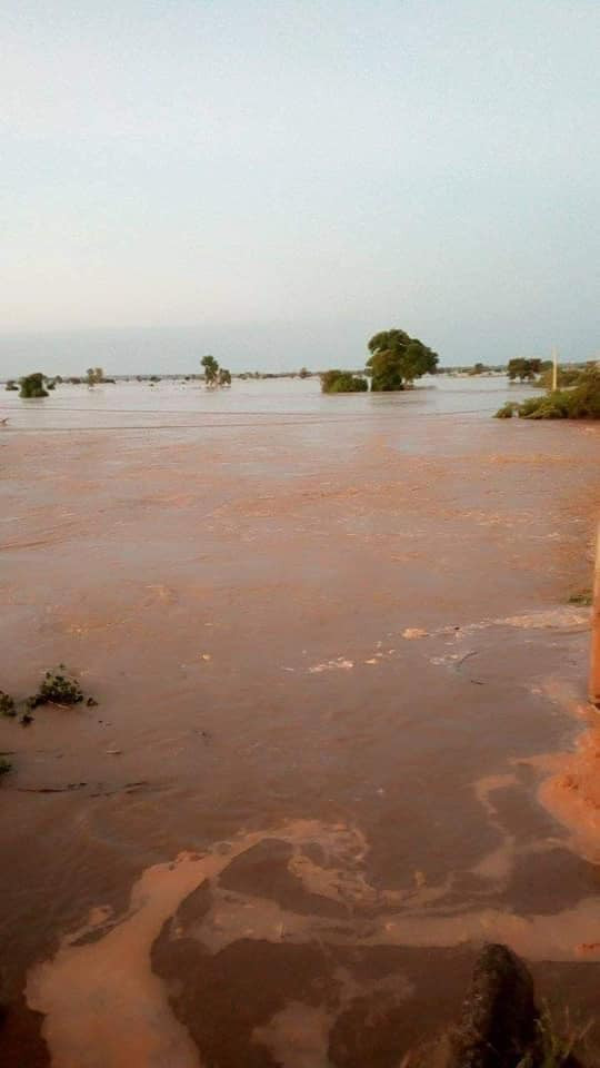 Flooding: Margai bridge collapses in Sokoto