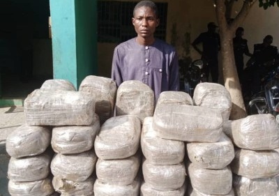 Police arrest mother and son with 49 parcels of Indian hemp in Kano