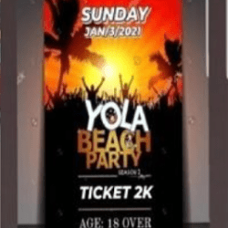 """""""We will not allow any immoral activity that could cause public outrage"""" - Police on Yola beach party case"""