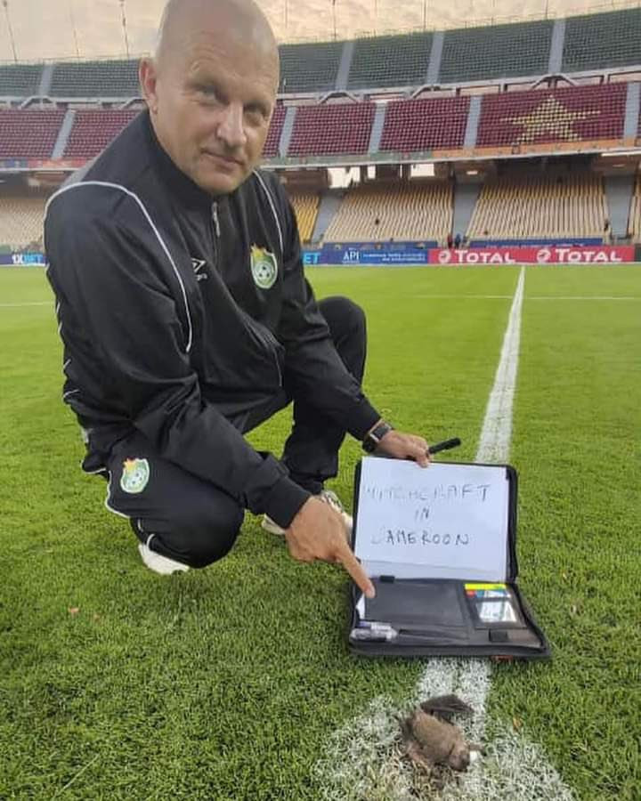CAF responds after Zimbabwe coach accuses Cameroon of practicing witchcraft after a dead bat with a written note was found on the pitch