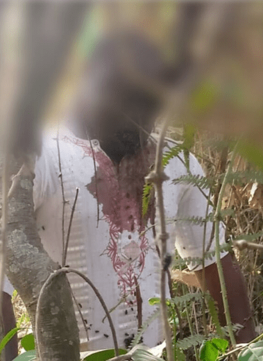 45-year-old man commits suicide in Osun (graphic photo)