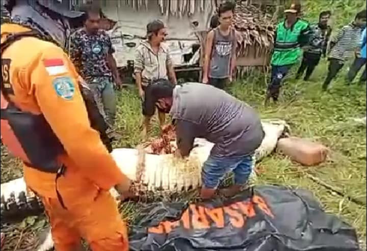 Body of 8-year-old boy cut out of crocodile that swallowed him whole in Indonesia