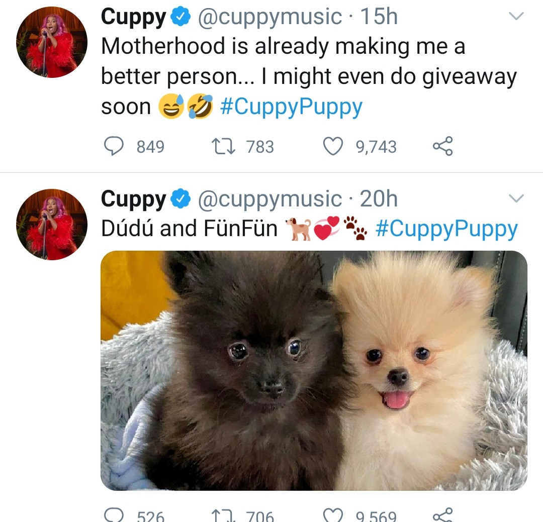 DJ Cuppy responds to follower who said he can