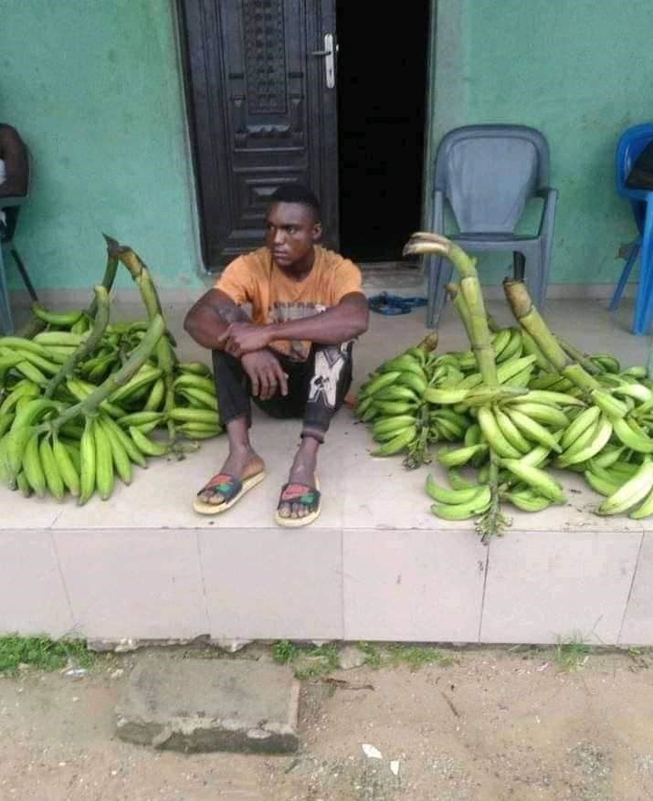 She asked me for N10K for makeup - Plantain thief nabbed in Bayelsa claims he stole to raise money for his girlfriend