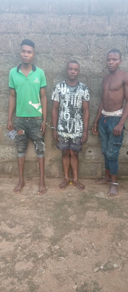 Three suspects cultists arrested for allegedly forcefully initiating members into their cult (photo)