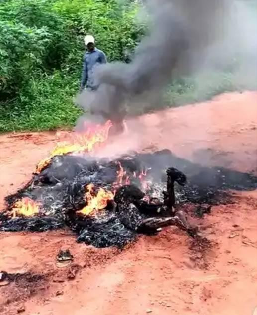 Jungle justice: Imo State Police Commissioner condemns burning of three suspected robbers (graphic photos)