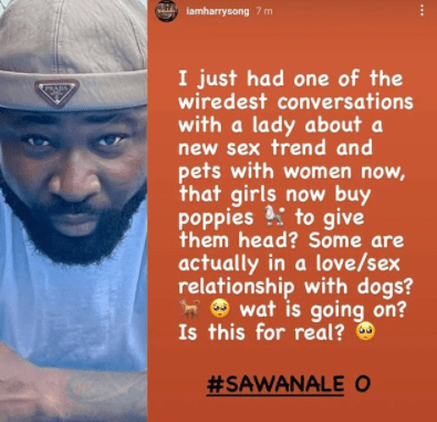 """""""What is going on?"""" Harrysong asks as he reveals he just discovered women now buy dogs to use as sex toys"""