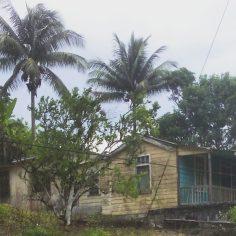 Old House, Jamaica