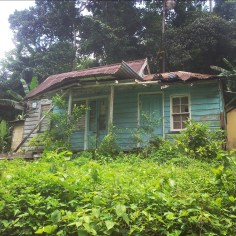 jamaica ruins house travel
