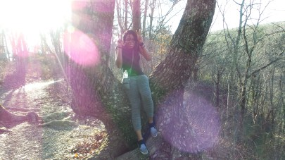 sitting in a tree twilight