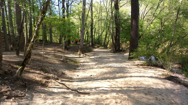 hiking travel explore atlanta lullwater park trail
