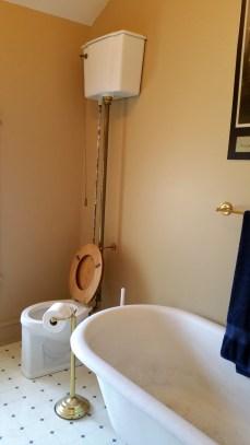 toilet tub illinois travel