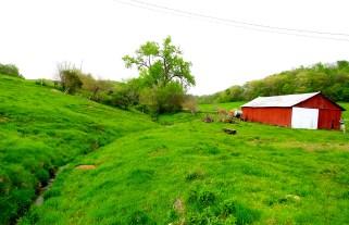 parrott farm opal illinois