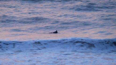 surfing-at-myrtle-beach-1