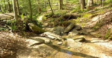 29 Deepdene Park Stream