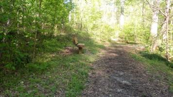 47 Hiking in Atlanta