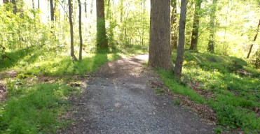 49 Deepdene Trail
