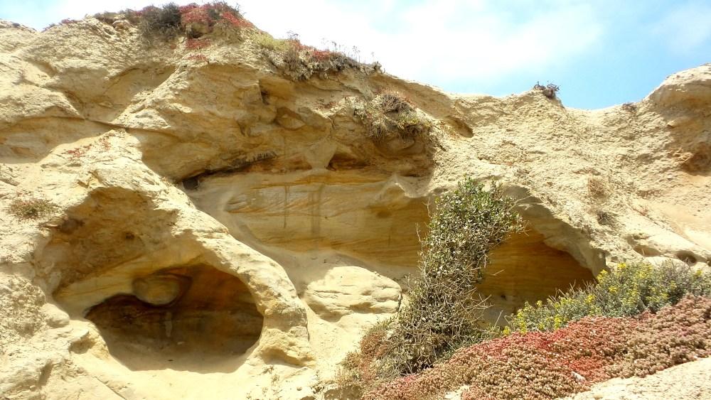 3 Torrey Pines Rocks.jpg