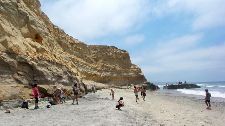 9 Torrey Pines Beach.jpg