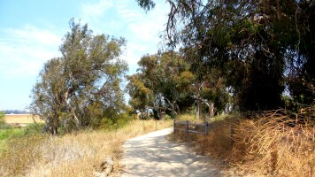 11 Annies Canyon Hiking Trail California