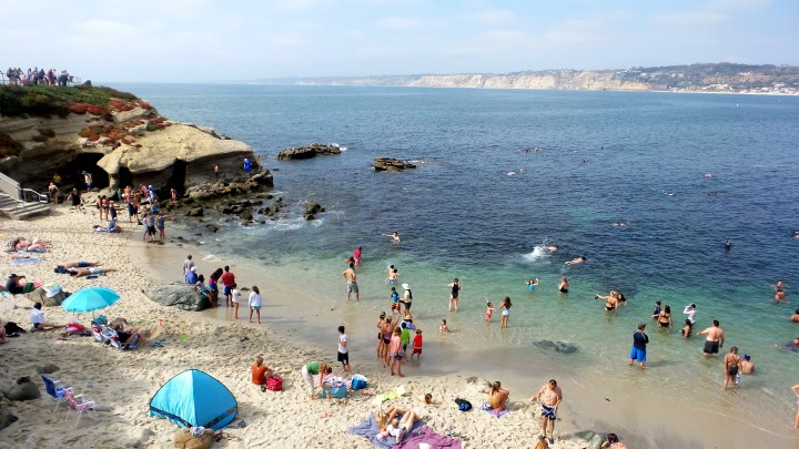 7 La Jolla Beach Snorkeling.jpg