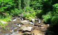 13 Amicalola Falls