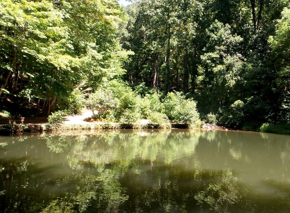 8 Amicalola Falls Reflection Pools